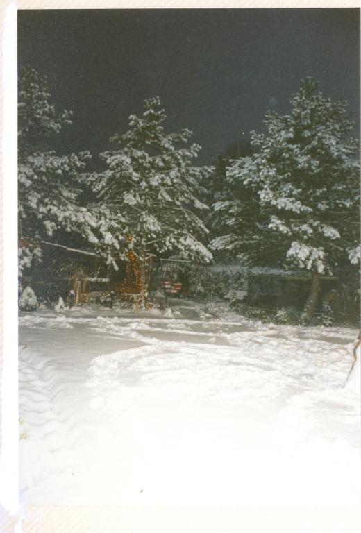 Gartenjahr 1998