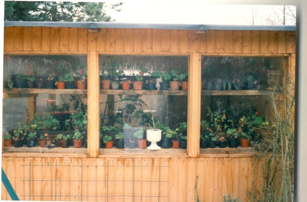 Gartenjahr 1996