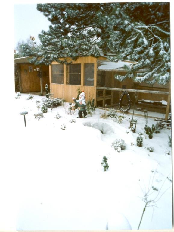 Gartenjahr 1995
