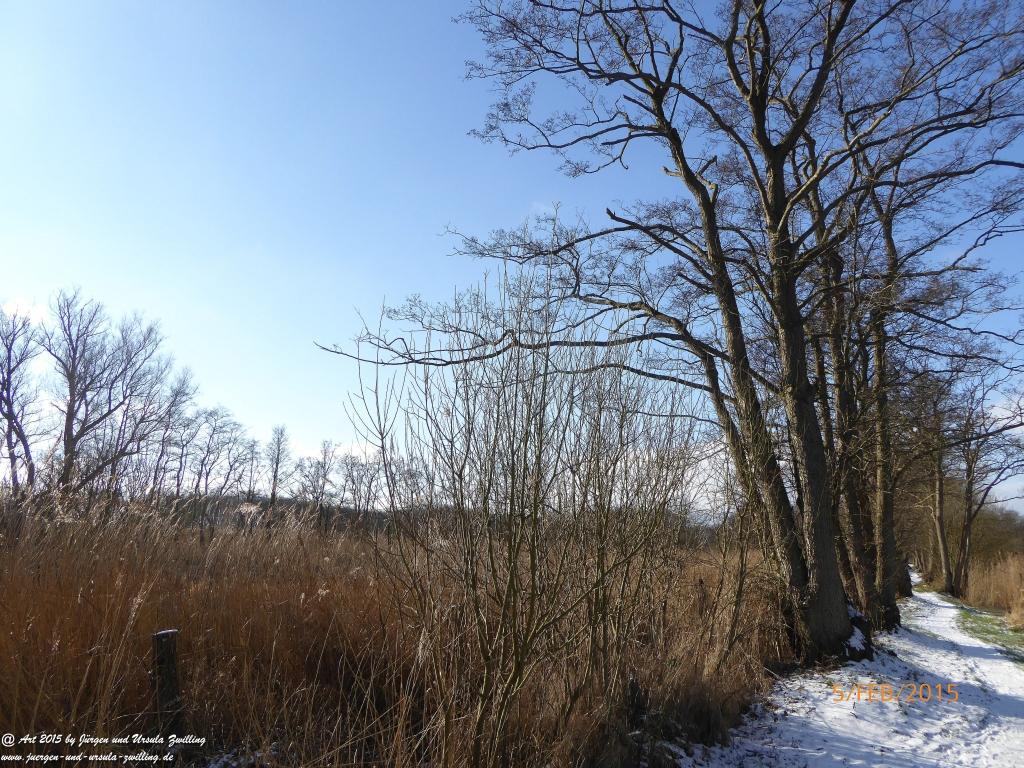 Philosophische Bildwanderung  Hemmelsdorfer See - Vogelpark Niendorf - Timmerdorferstrand - Ostsee