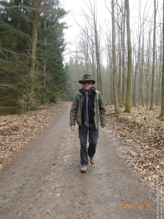 Philosophische BildwanderungÖlschieferweg – Waldwanderung im Süden der Grube Messel - Odenwald