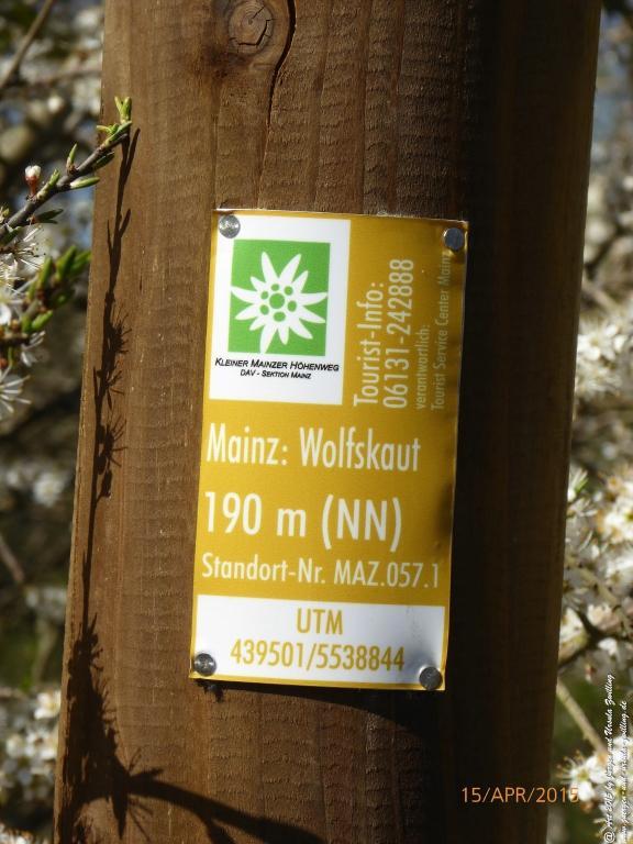 Philosophische Bildwanderung Kleiner-Mainzer-Höhenweg - Rheinhessen