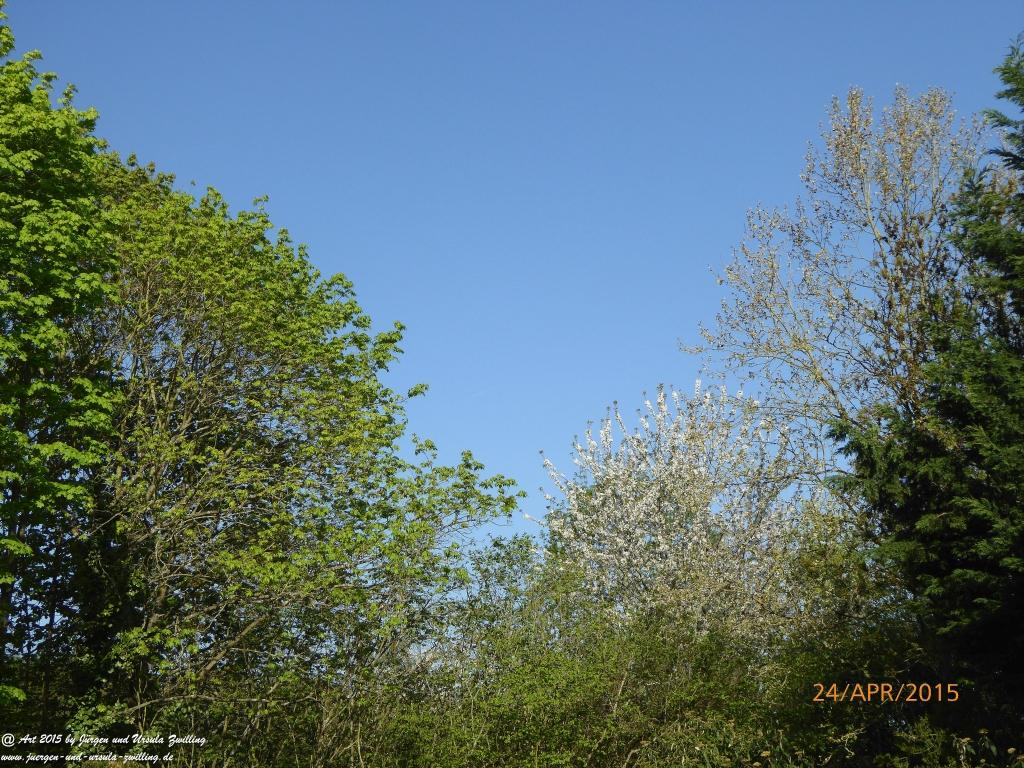24.04.2015 - Frühlingsblick bei strahlender Sonne