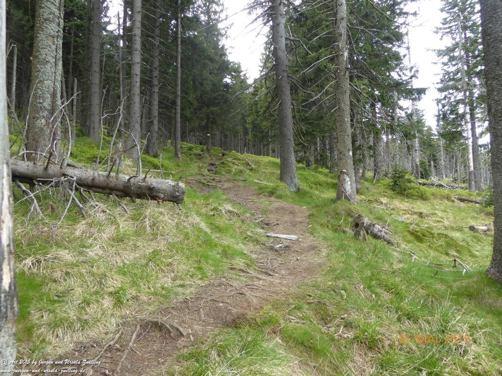 Philosophische Bildwanderung Kowary - Skalny Stół - Karkonosze - Krakonoše – Polen - Tschechien -(Schmiedeberg - Tafelstein - Riesengebirge)