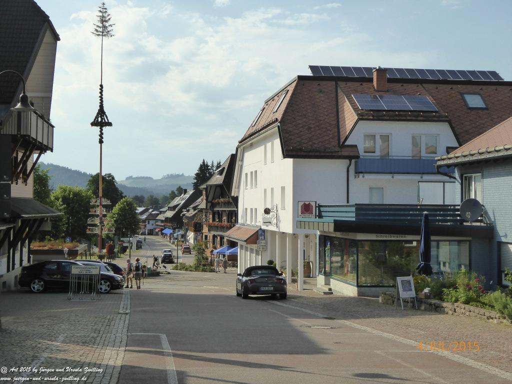 Philosophische Bildwanderung Zum-Hoechsten- Feldberg - Schwarzwald