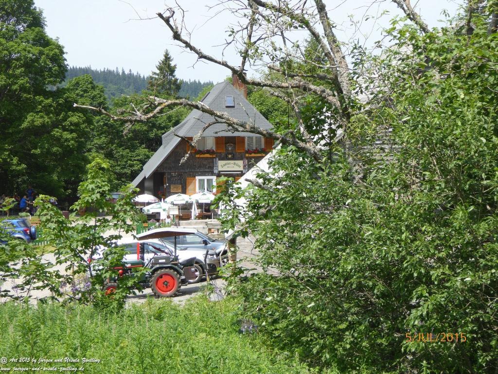 Philosophische Bildwanderung Premiumwanderweg-Feldberg-Steig-Schwarzwald