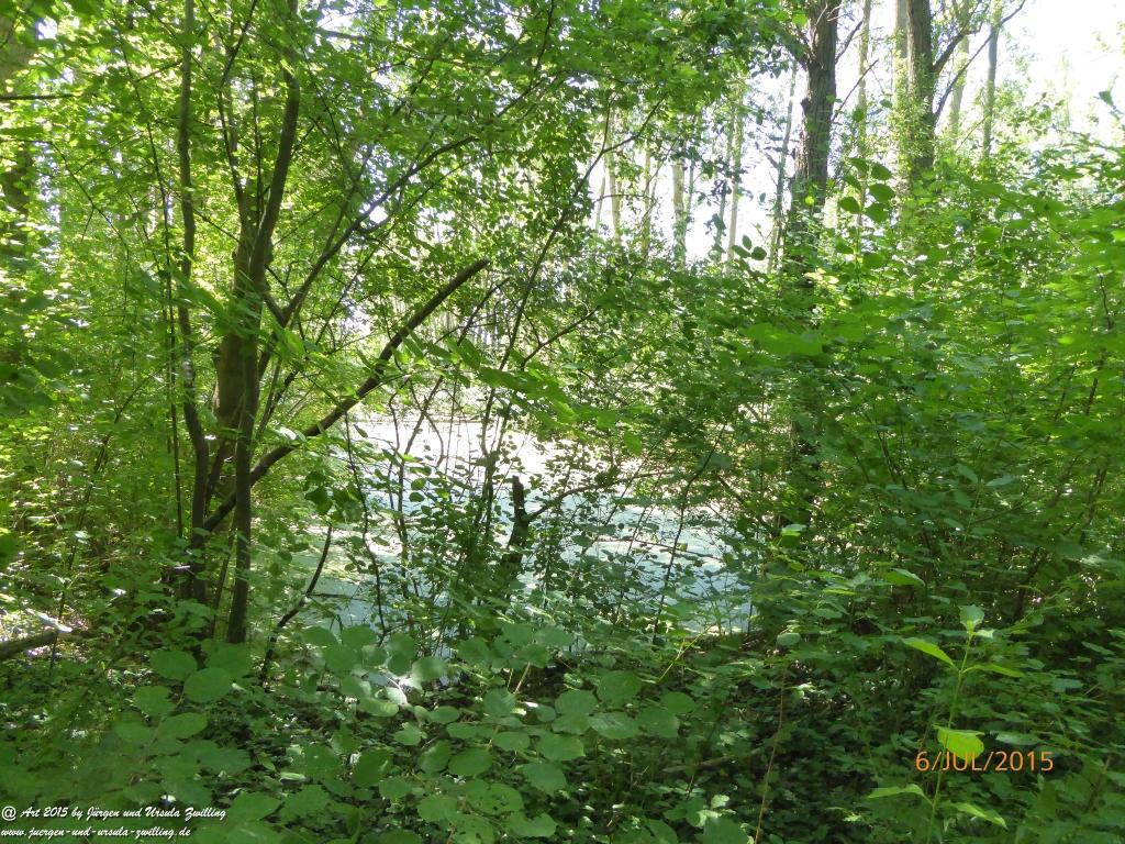 Philosophische Bildwanderung Hoerdt-Treidlerweg - Pfalz