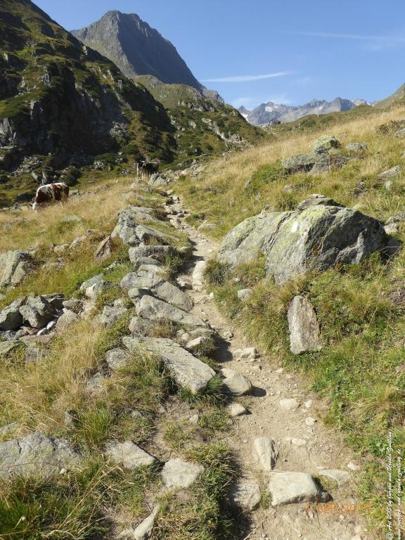 Philosophische Bildwanderung Franz Senn Hütte- Neustift in Tirol - Stubaital - Österreich