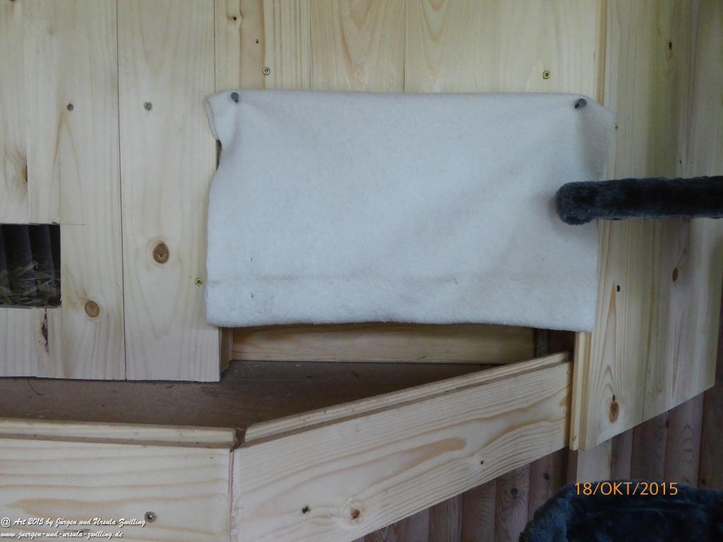 18.10.2015 Katze Mimi - Ergänzung des Katzenhauses mit Katzenbaum