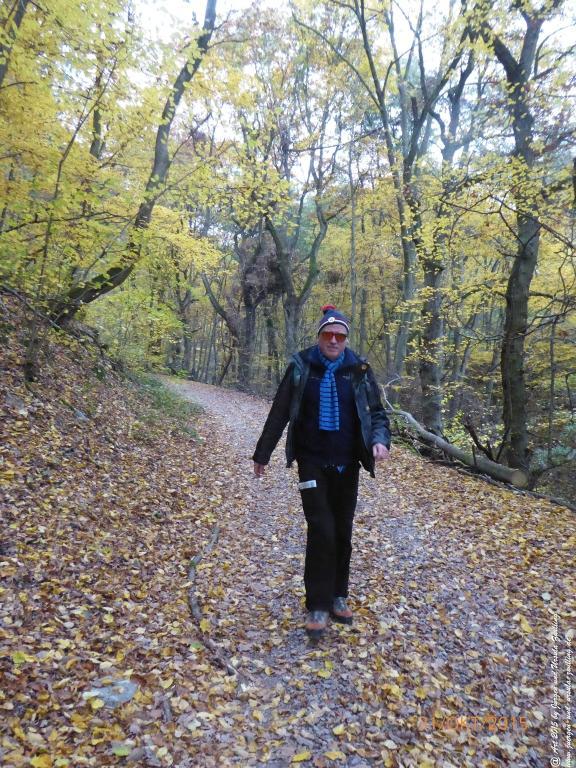 Philosophische Bildwanderung Rhein-Nahe-Schleife
