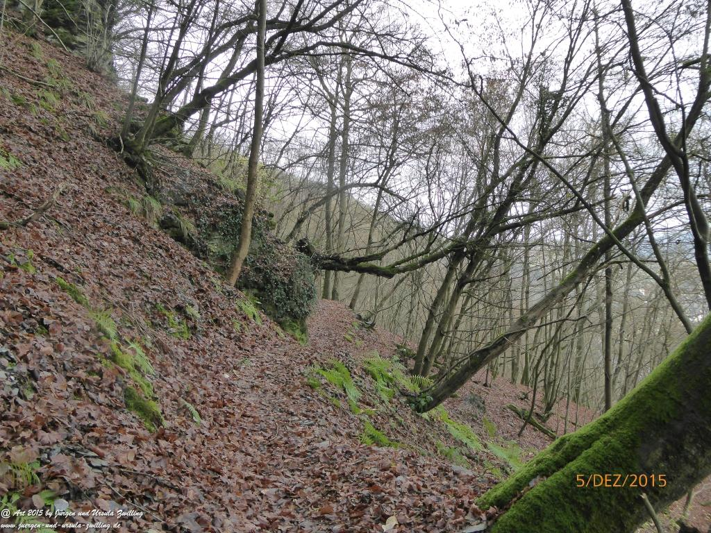 Philosophische Bildwanderung  Moselsteig-Seitensprung-Briedeler-Schweiz