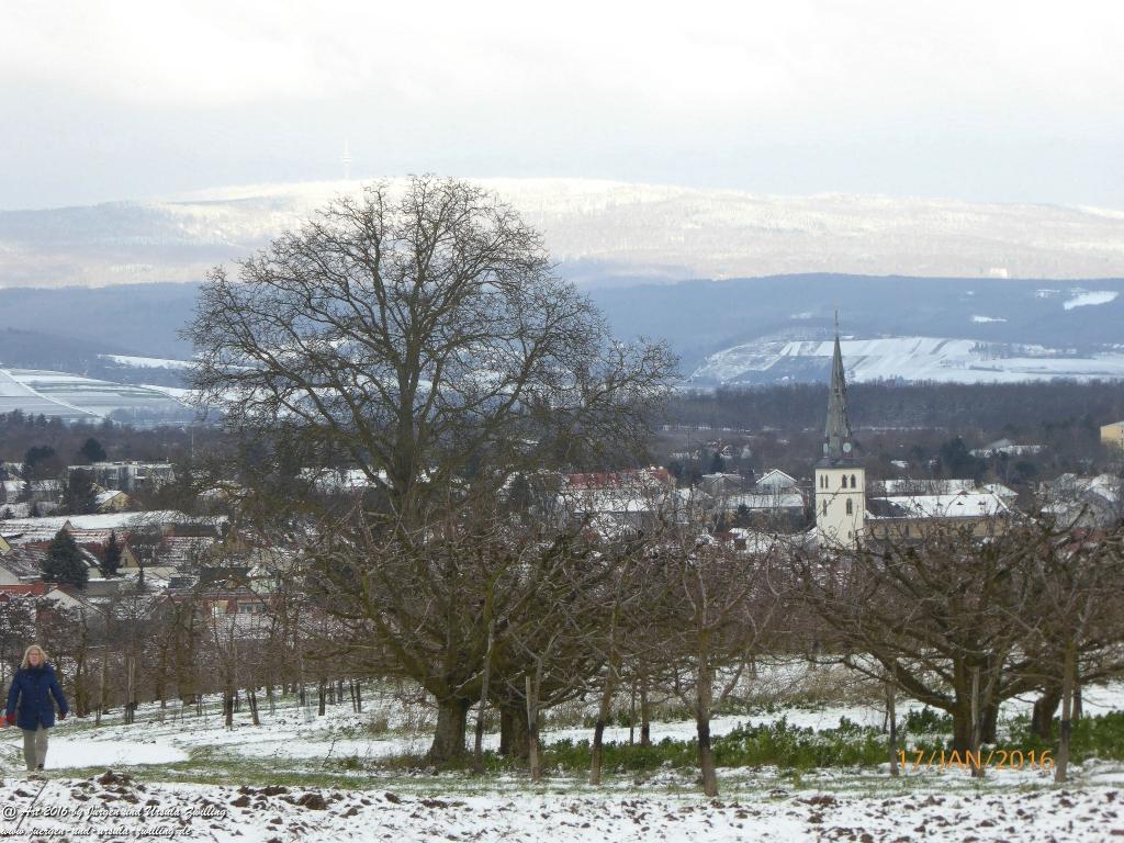 Rheingaublick aus Rheinhessen noch ohne Windkrafträder