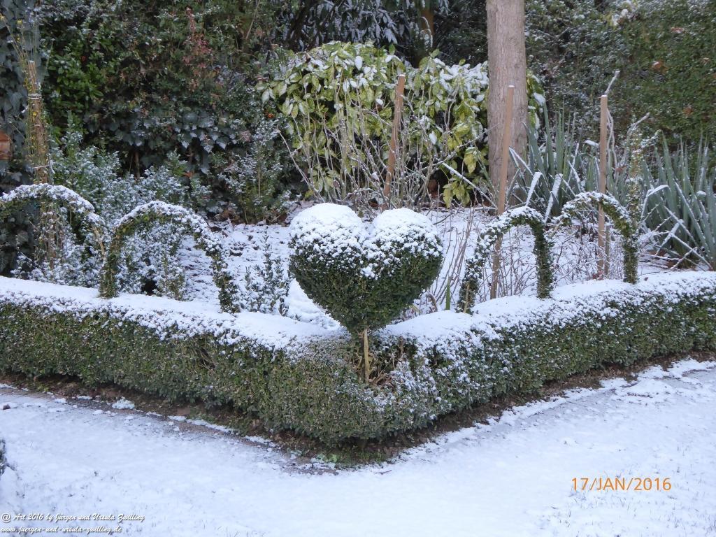 Schneeblick