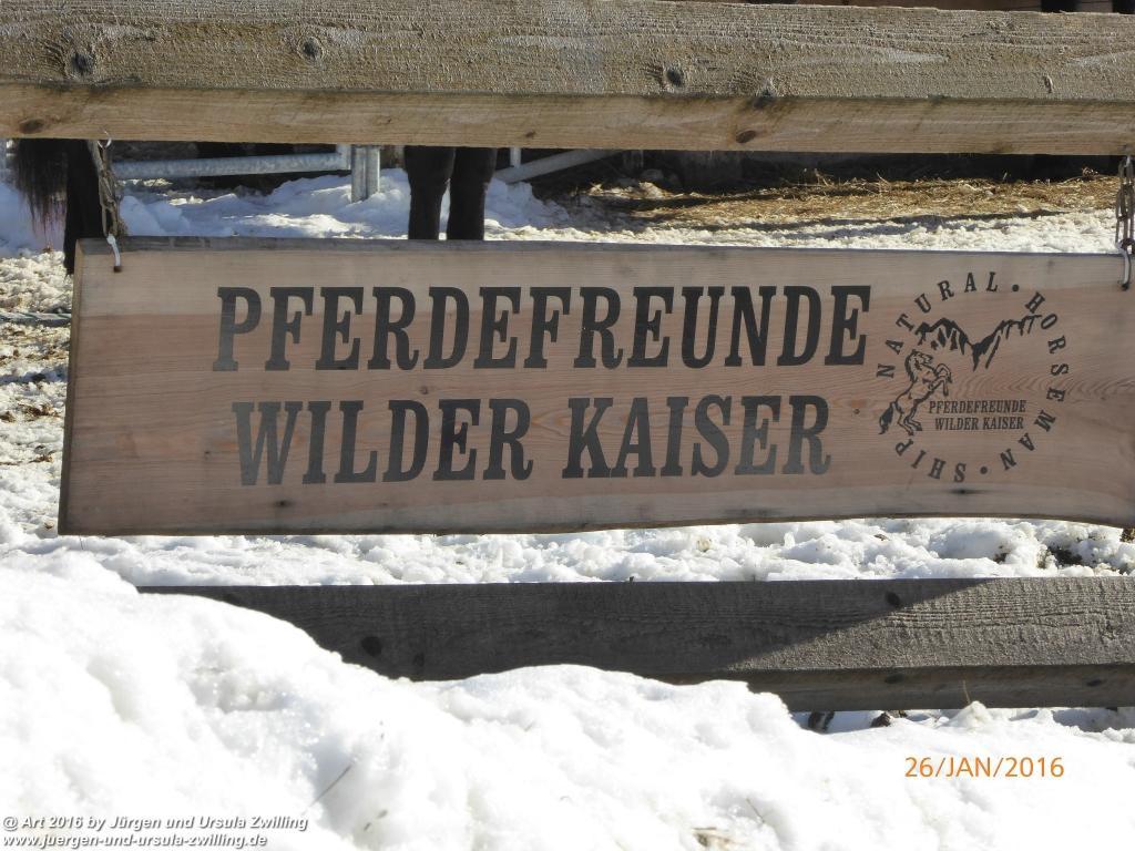 Philosophische Bildwanderung - Haflingertränke - Ellmau-Tirol - Kaisergebirge - Österreich