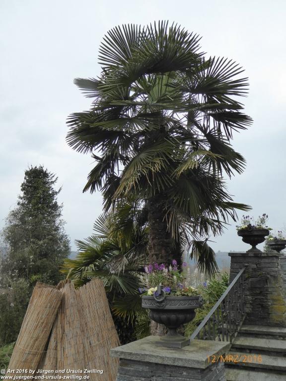 Insel Mainau - Bodensee mit Schmetterlingshaus und Orchideenausstellung