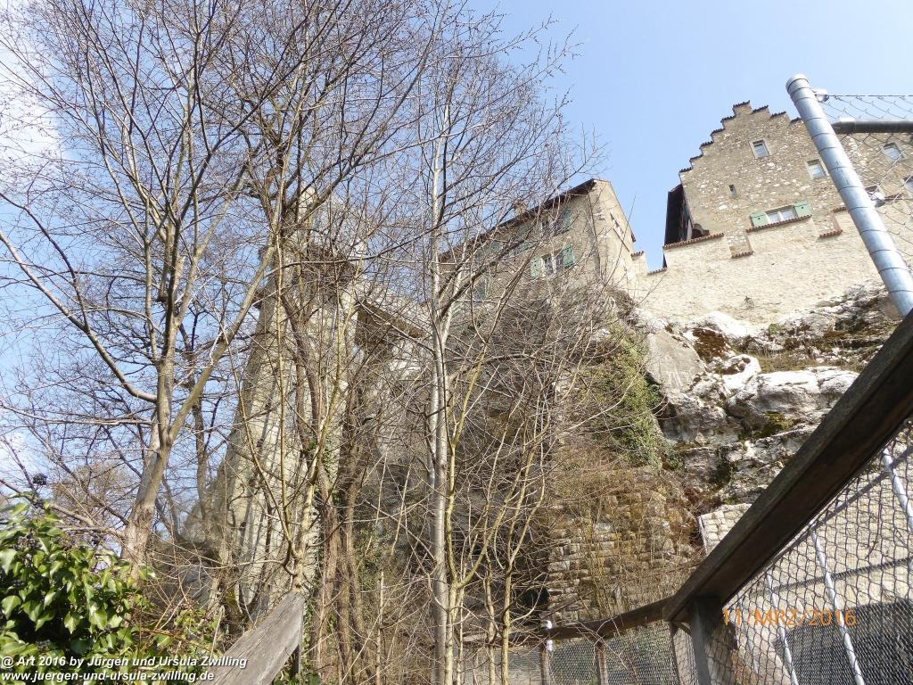 Philosophische  Bildwanderung  -Rheinau - Noll - Neuhausen am Rheinfall - Rheinfall - Rheinau - Bodensee - Schweiz