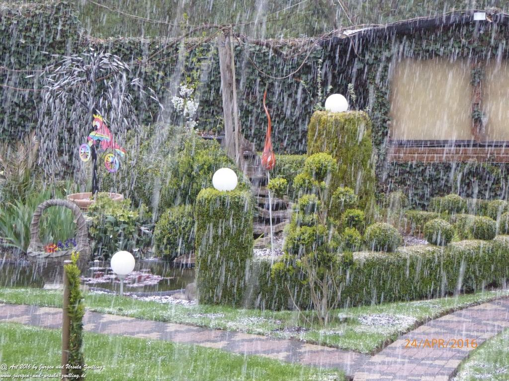 April - April - Aprilwetter am 24.04.2016 im Garten
