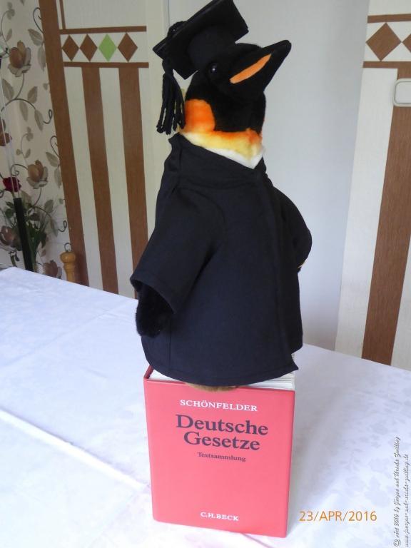 Zum zweiten juristischen Staatsexamen mit 28 Jahren - handgefertigte Anwaltsrobe aus Ursula's Modeblick  mit Lieblingstier Pinguin für Tochter
