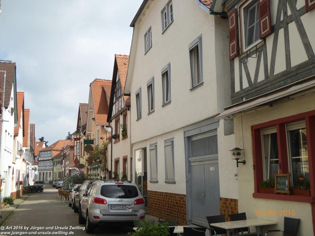 Philosophische Bildwanderung Zwingenberg - Auerbacher Schloss - Melibokus - Ruine Alsbacher Schloss - Zwingenberg - Odenwald