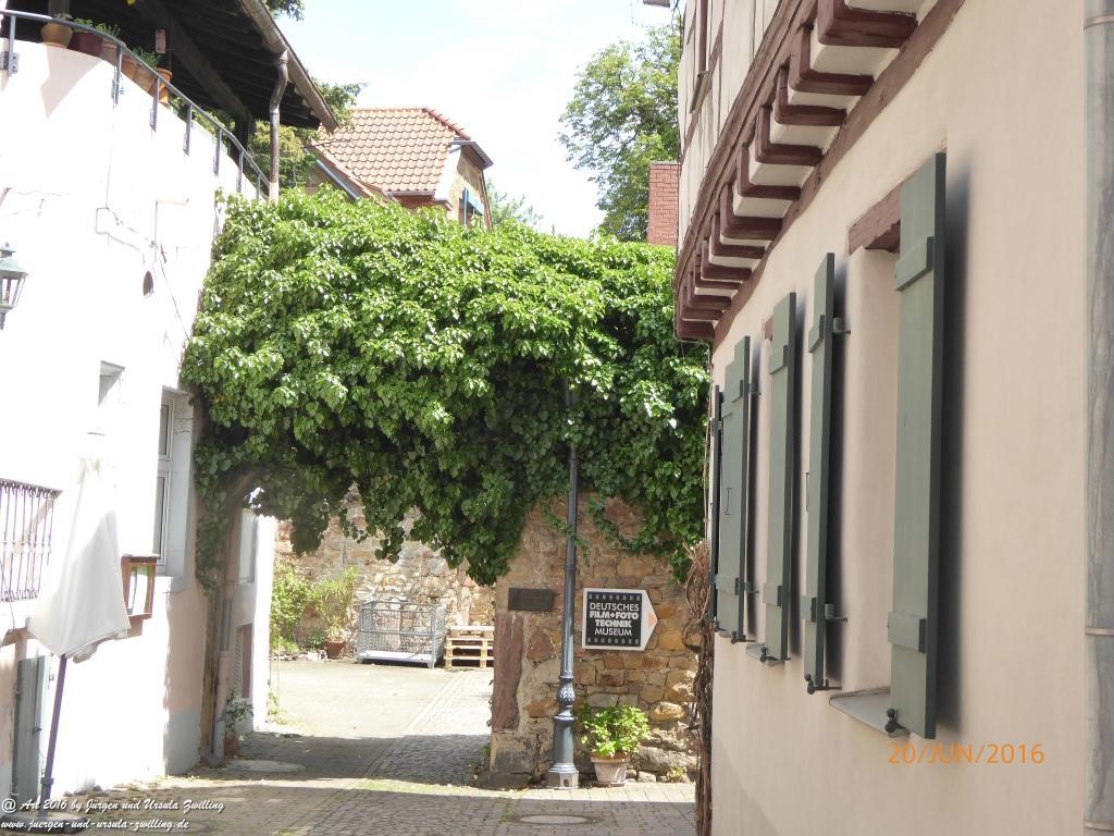 Deidesheim an der Deutschen Weinstraße - Pfalz