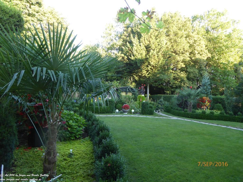 Gartenblick in der Morgensonne