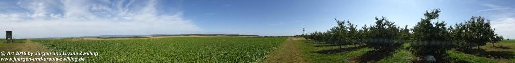 Spätsommer in den Feldern von Mainz Finthen und Ober Olmer Wald - Rheinhessen