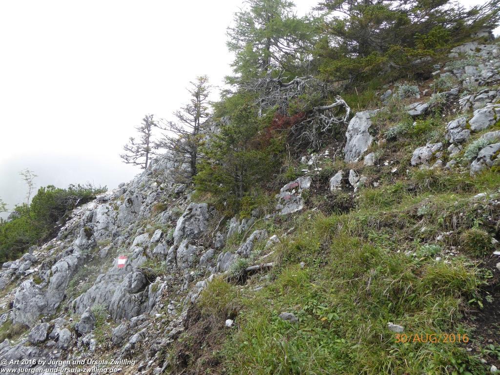 Philosophische Bildwanderung Zwillingskogel - Grünau im Salzkammergut - Österreich
