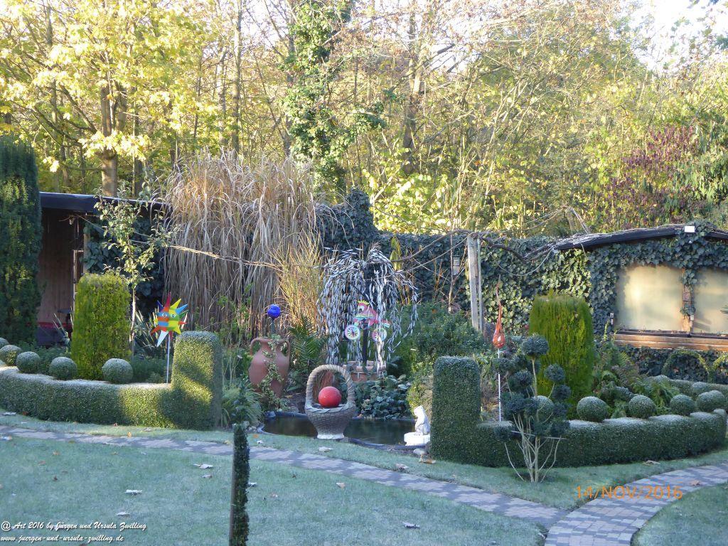 14.11.2016 Erster Morgen-Frost im Garten