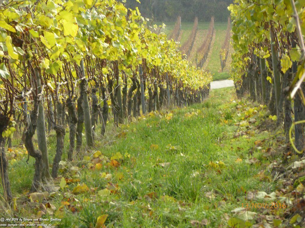 Philosophische Bildwanderung Selztal-Terroir-Route-3 - Rheinhessen