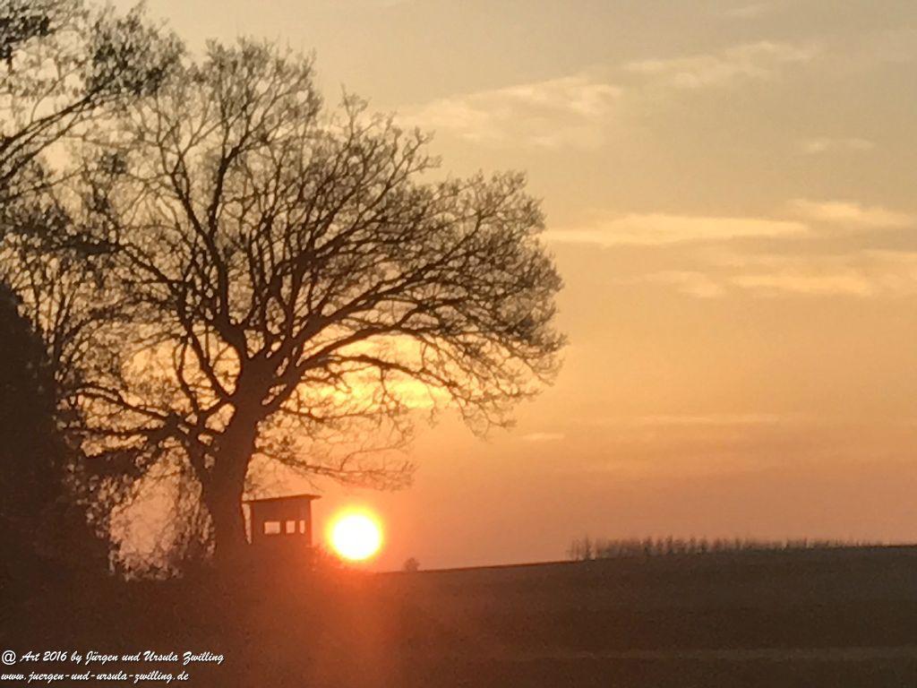 Sonnenaufgang beim Joggen - Rheinhessen - Mainz