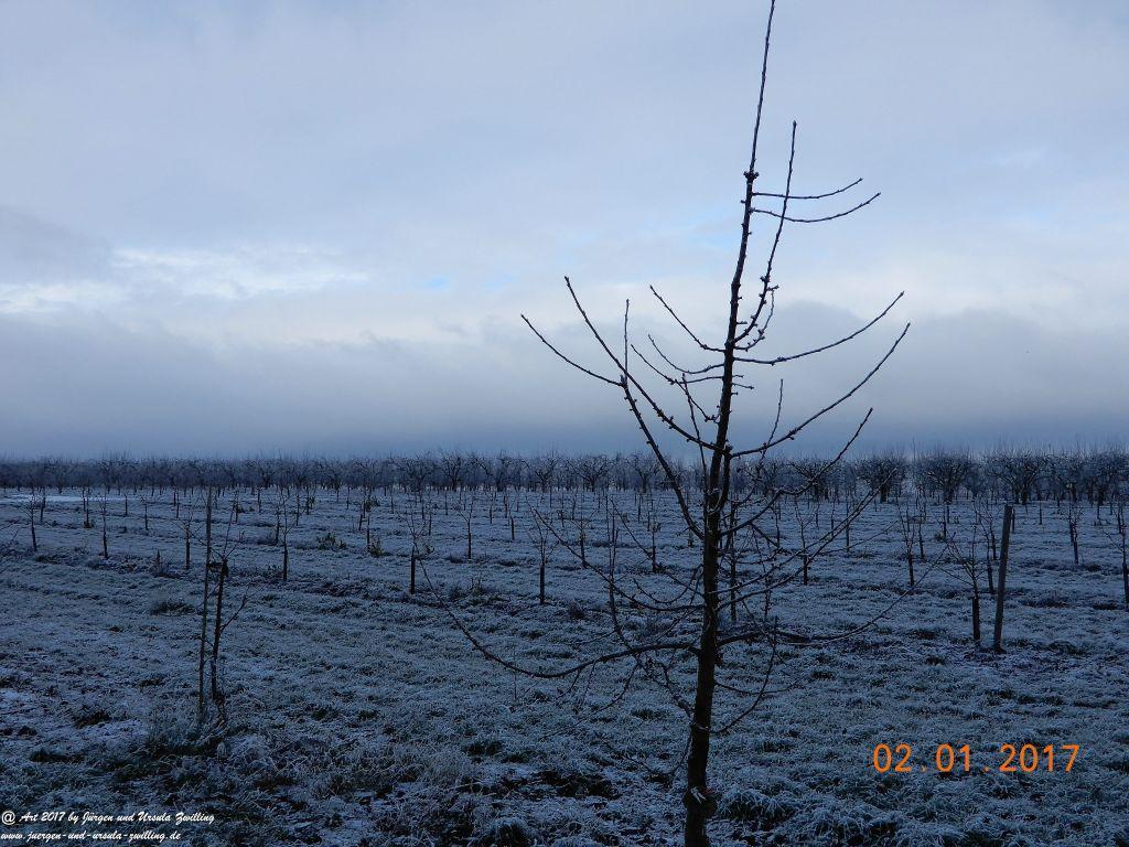 Neujahresblick winterliche Felder von Mainz Finthen und Ober Olmer Wald - Rheinhessen