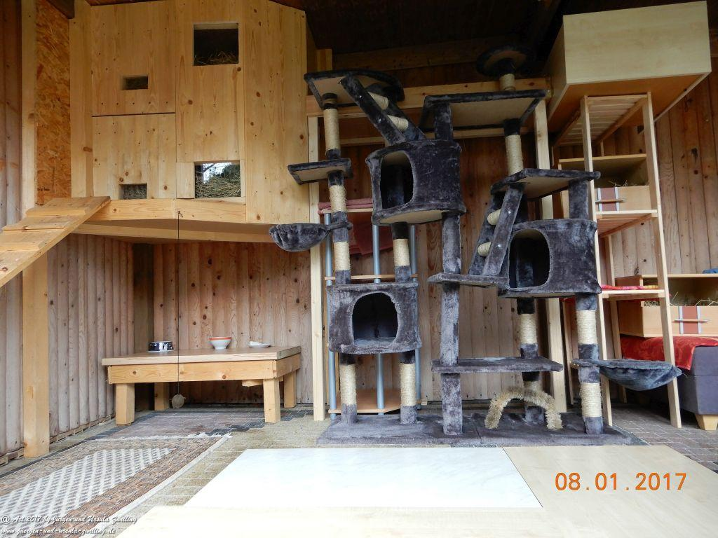 Selbstgebautes Katzenhaus für unsere 5 Mimi's
