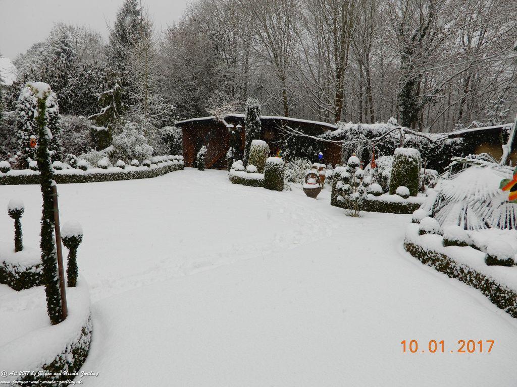 Garten  im Schnee