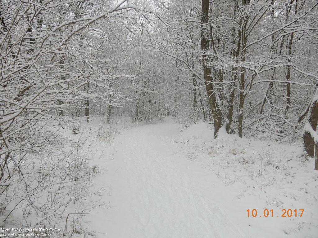 Felder von Mainz Finthen und Ober Olmer Wald im Schnee