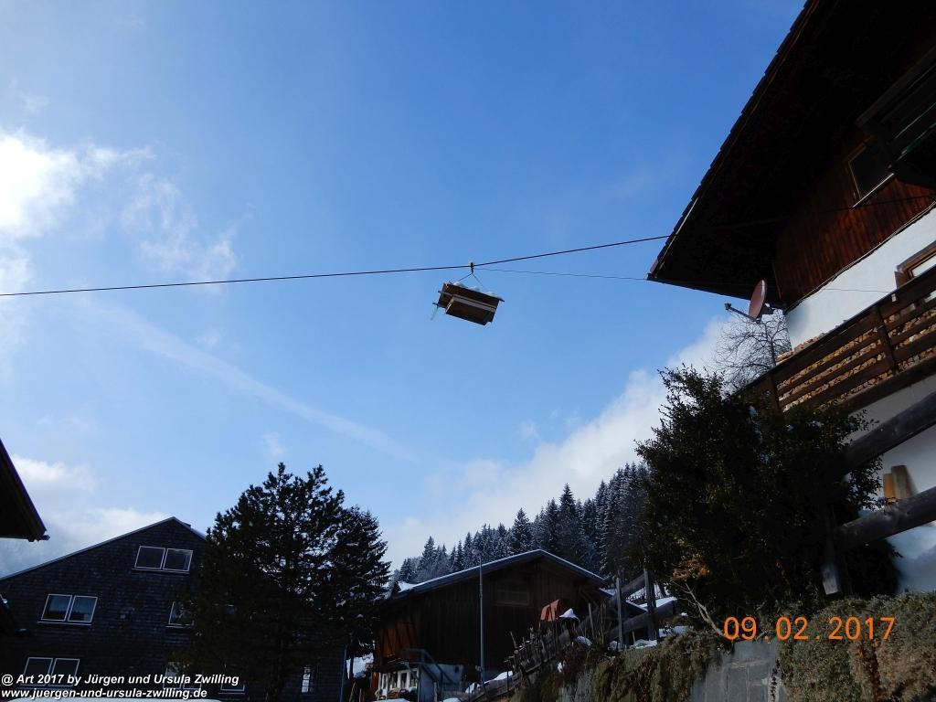 Katzensicheres Vogelhaus - Nesselwaengle - Tannheimer Tal - Österreich