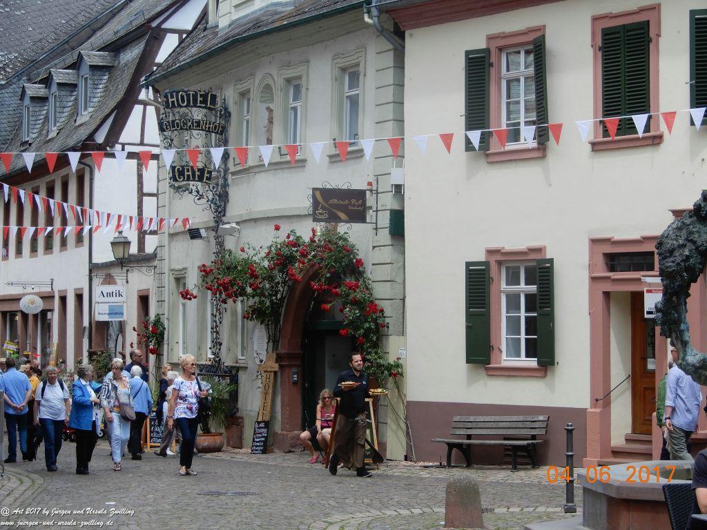 Eltville am Rhein - Rosentage