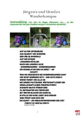 Tourbeschreibung Soonwaldsteig