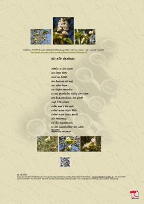 Die alte Kastanie - Gedicht - Gedanken