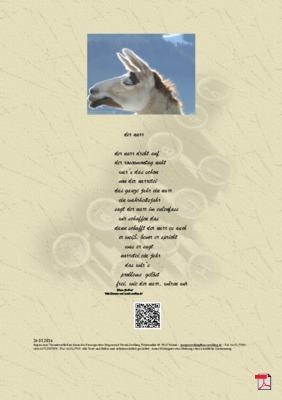 Der Narr - Gedicht - Gedanke