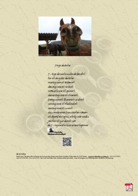 7 Tage Deutscher (Ausländerfeindlichkeit - FLüchtlinge)  - Gedicht - Gedanken