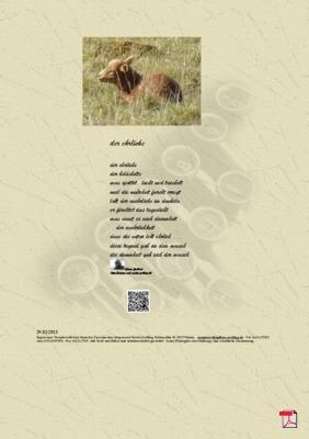 Der Ehrliche - Gedicht - Gedanken