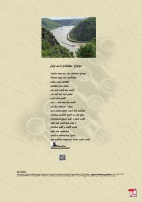 FDP und Pilatus-Frage -Gedichte - Gedanken