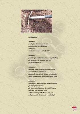 Sozialstaat - Gedicht -Gedanken