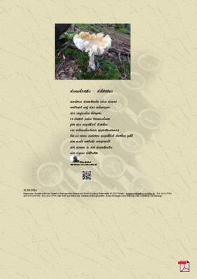 Demokratie - Diktatur - Gedichte - Gedanken