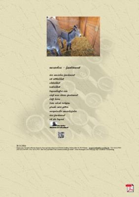 Menschen - Fundament (Glaube) - Gedichte - Gedanken
