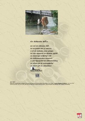 Der Diskussion stellen (Politik, Gesellschaft) - Gedichte - Gedanken