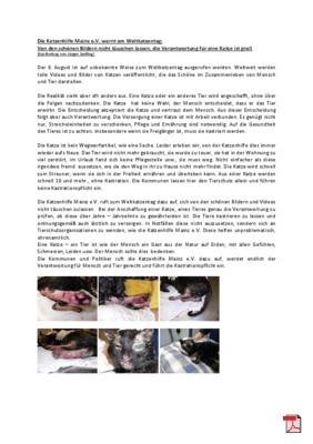 Von den schönen Bildern nicht täuschen lassen, die Verantwortung für eine Katze ist groß. Gastbeitrag bei der Katzenhilfe Mainz e.V. zum Weltkatzentag