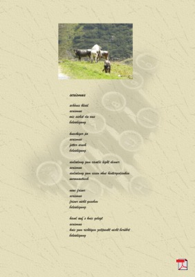 Sexismus (Mensch, Gesellschaft, Politik) - Gedichte -Gedanken