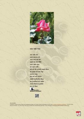 Eine Rote Rose - Gedicht - Gedanken (Mensch, Familie, Gesellschaft, Valentinstag)