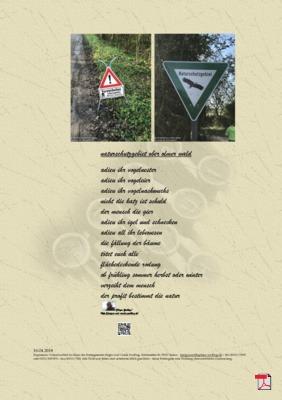 Naturschutzgebiet Ober Olmer Wald - Rheinhessen (Mensch, Gesellschaft, Natur, Umwelt) - Gedicht - Gedanken